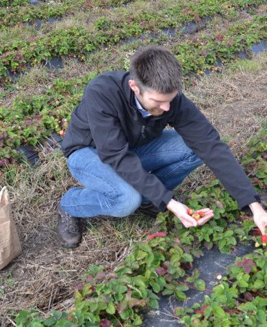 A man works in a field