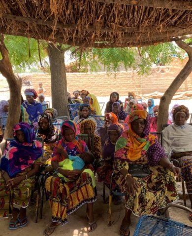 Women's group meeting in Mali