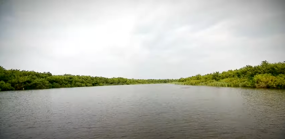 Image of Kolkheti National Park